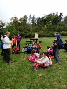 Vyučování v přírodě